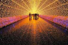 Thiên đường ánh sáng từ đèn led trang trí trong những lễ hội.